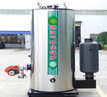 立式燃油燃气蒸汽发生器